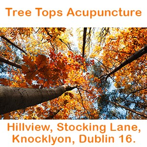 Tree Tops Acupuncture